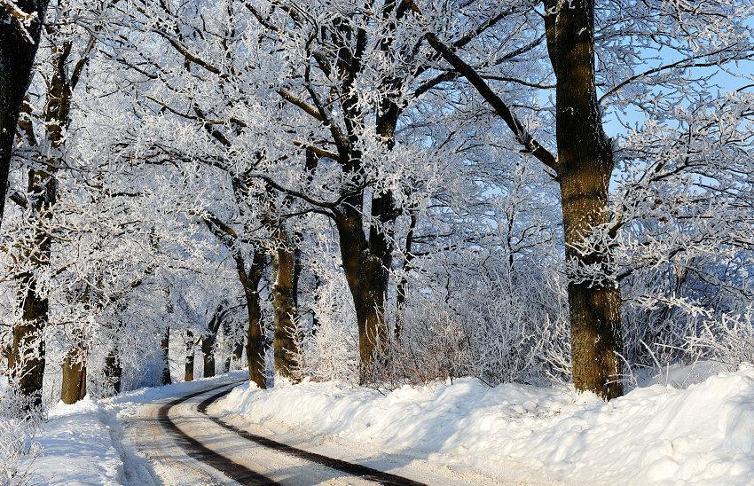 Vinterväglag på landsväg